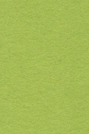 Wollfilz gruen